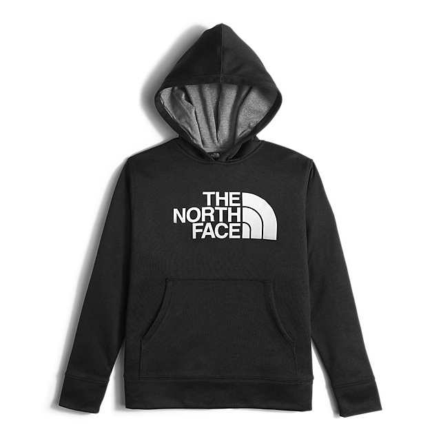 Discount NORTH FACE BOYS\' SURGENT PULLOVER HOODIE BLACK ONLINE