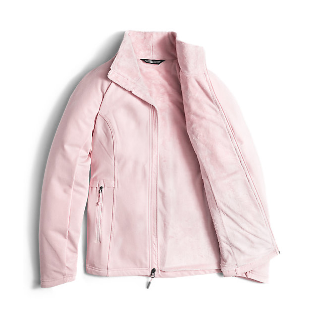 Discount NORTH FACE WOMEN\'S LISIE RASCHEL JACKET PURDY PINK ONLINE