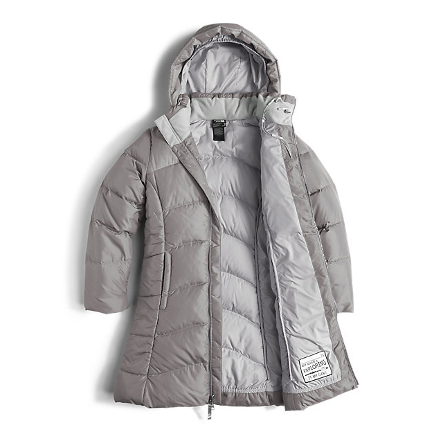 Discount NORTH FACE GIRLS\' ELISA DOWN PARKA METALLIC SILVER ONLINE